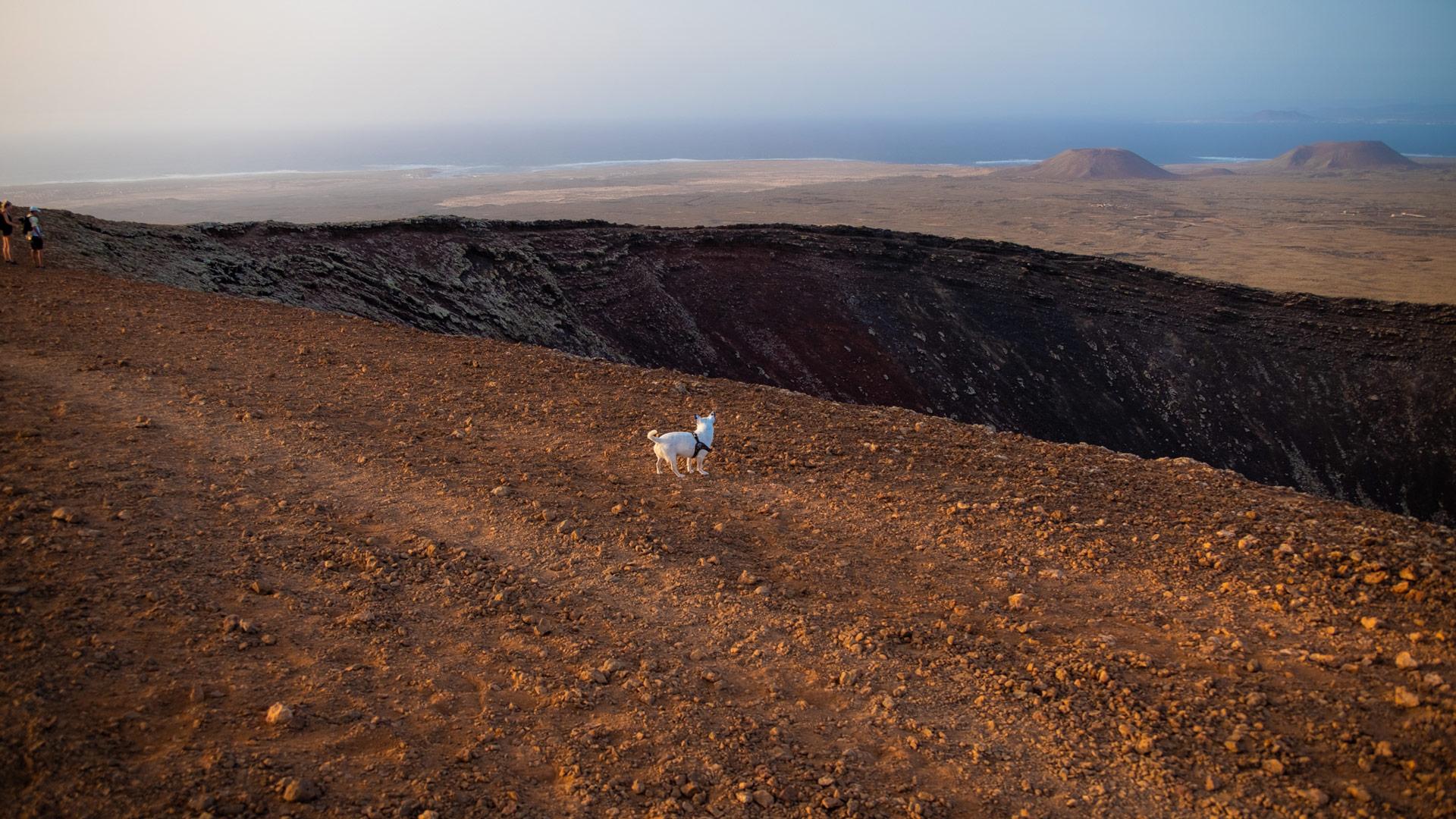 blog viaggi, mauro e cocò per il mondo, viaggiare con un cane, fuerteventura,